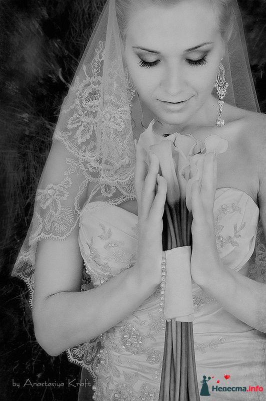 Фото 126459 в коллекции Wedding 2010 - Фотограф Анастасия Крафт