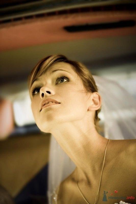 Фото 67640 в коллекции Мои фотографии - Фотограф Неукрытый Валерий
