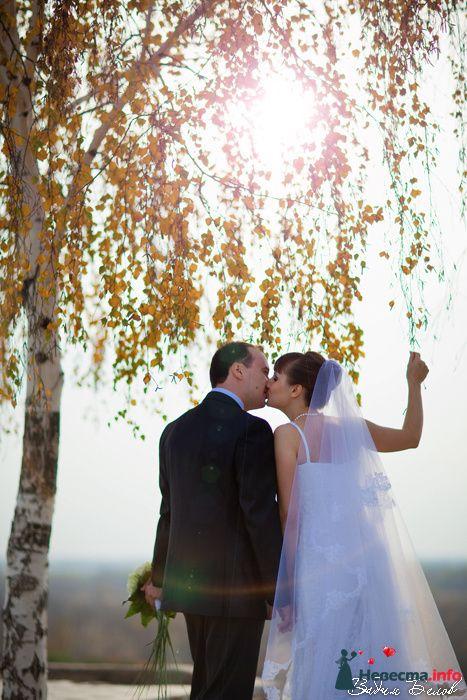 Фото 103631 в коллекции Свадьбы (Фотограф Вадим Белов) - Невеста01