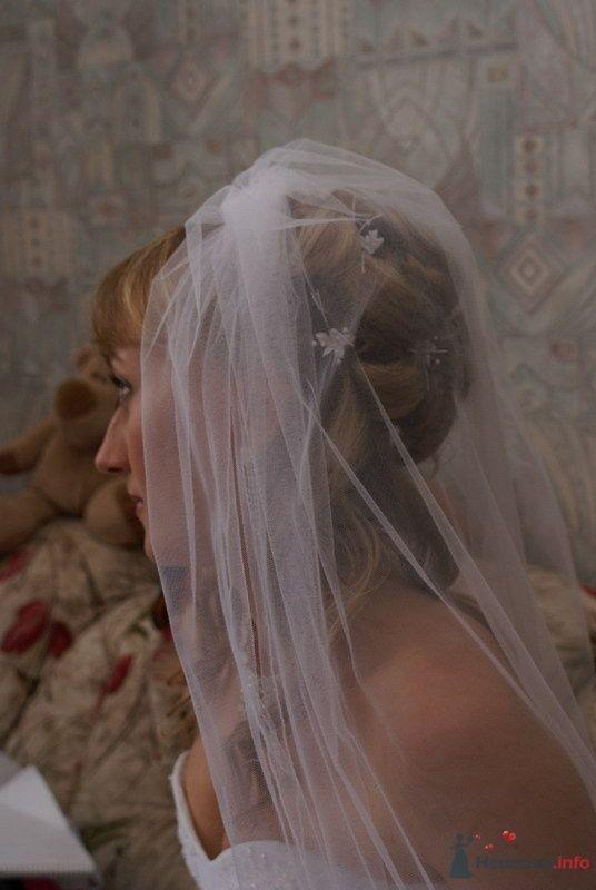 Фото 67999 в коллекции Мои фотографии - Свадебный стилист Леонова Надежда
