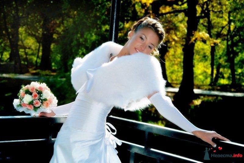 Свадебная фотосъемка в Саратове - фото 83022 Молодоженам.Ру - Фото и видеосъемка