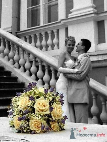 Фото 3976 в коллекции Мои фотографии - Ксения Минченкова - ваш свадебный фотограф