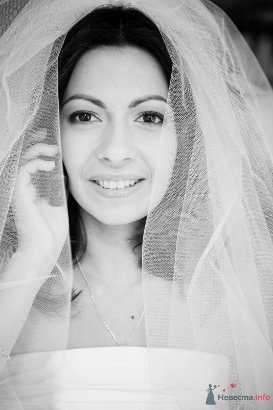 Фото 54290 в коллекции Наша Свадьба 01 августа 2009 г. - Anjuta