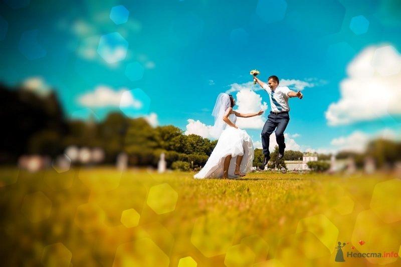 Фото 54367 в коллекции Наша Свадьба 01 августа 2009 г. - Anjuta