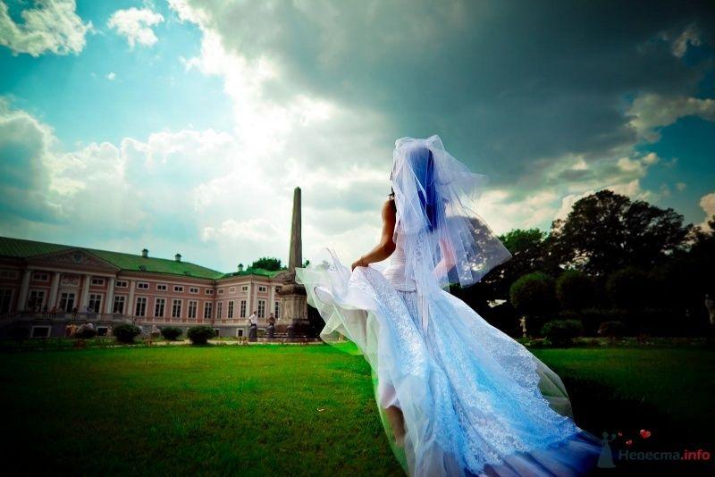 Фото 54369 в коллекции Наша Свадьба 01 августа 2009 г. - Anjuta