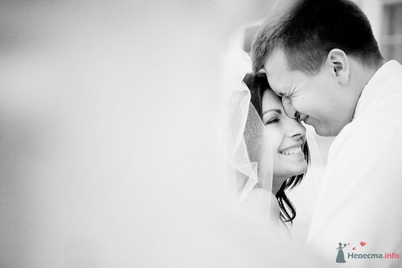Фото 54376 в коллекции Наша Свадьба 01 августа 2009 г. - Anjuta