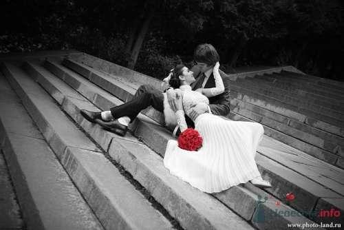прогулка - фото 4328 Свадебные фотоистории от Андрея Егорова