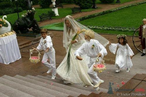 """Фото 5038 в коллекции Мои фотографии - Центр """"SV-Premier"""" - проведение свадеб"""