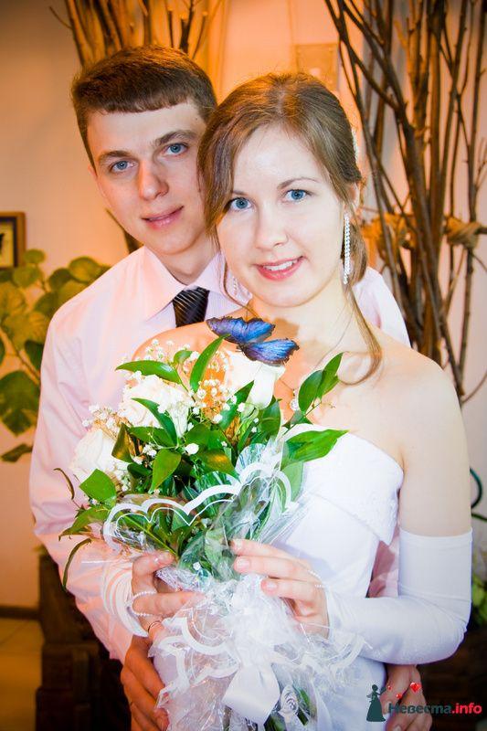 Фото 87916 - Фотограф Разумкова Любовь