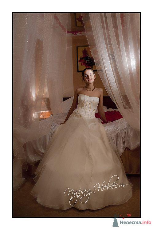 Фото 79184 в коллекции Парад Невест II - Фотостудия Александра Деменева