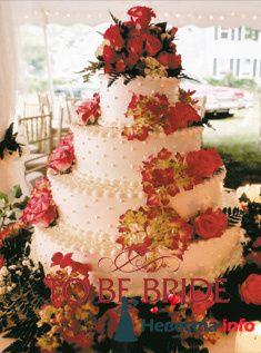 Фото 124069 в коллекции Мои фотографии - Невеста01