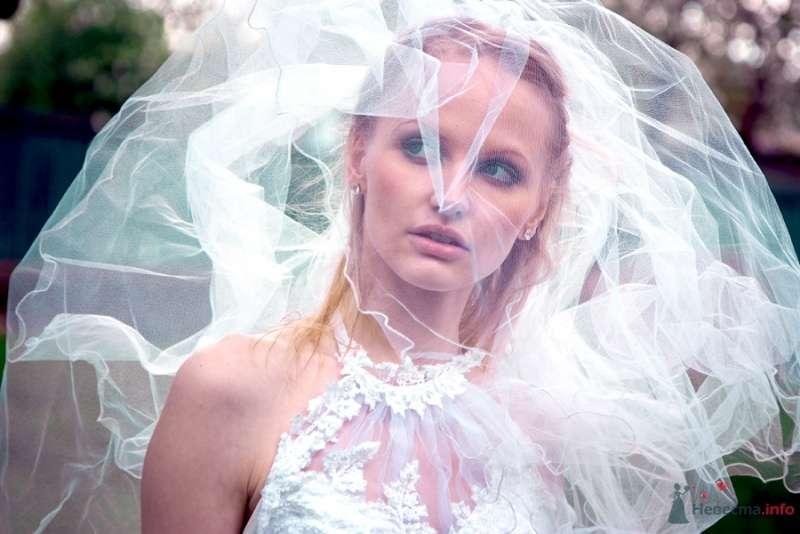 Фото 69834 в коллекции Свадебные фотографии - Свадебный фотограф Сергей Несин