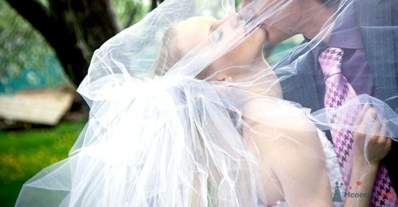 Фото 69835 в коллекции Свадебные фотографии - Свадебный фотограф Сергей Несин