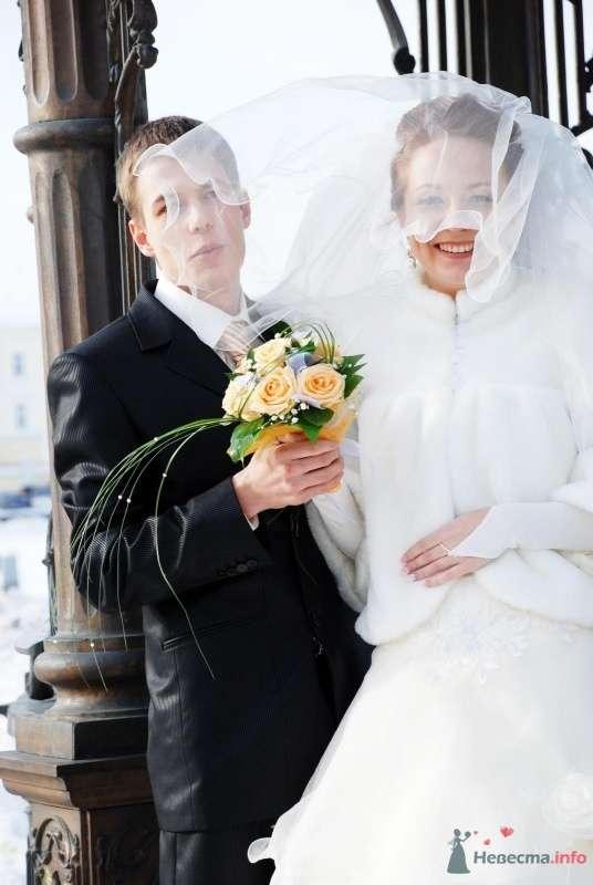 Фото 70553 в коллекции Денис и Юлия 13.02.2010 - Свадебный фотограф Наталия Кудрина