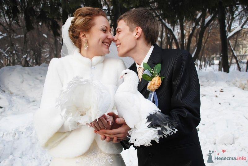 Фото 70557 в коллекции Денис и Юлия 13.02.2010 - Свадебный фотограф Наталия Кудрина