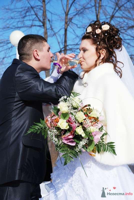 Фото 75744 в коллекции Алексей и Екатерина  март - Свадебный фотограф Наталия Кудрина