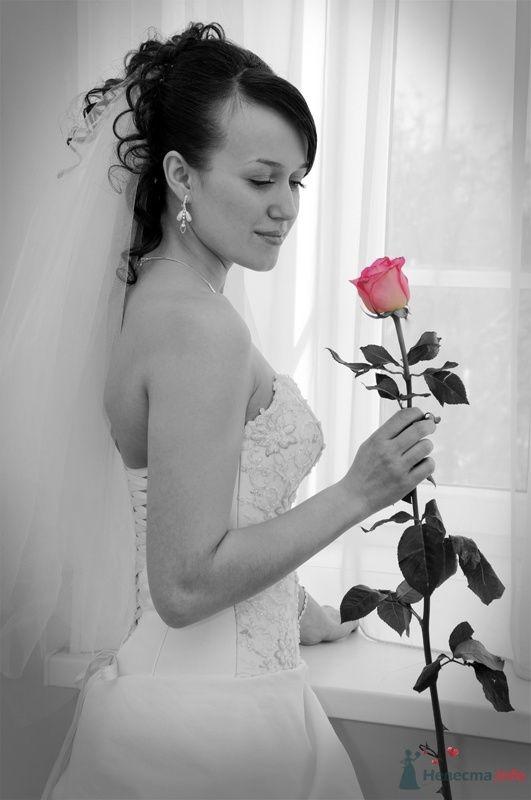Фото 70440 в коллекции Свадебный фотограф г.Липецк - Невеста01