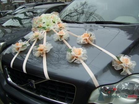 """Фото 72267 в коллекции оформление свадебных автомобилей - """"Дом праздника"""" - свадебное оформление"""