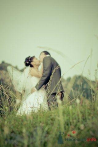Фото 70667 в коллекции моя свадьба - BaGu