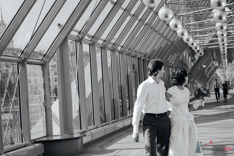 Лера и Дима - фото 70797 Свадебный фотограф. Татьяна Гаранина
