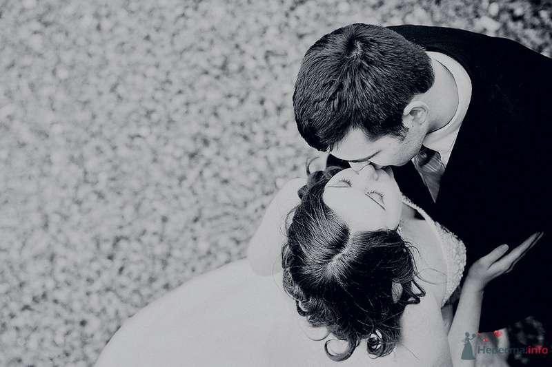 свадебная  - фото 71552 Свадебный фотограф. Татьяна Гаранина