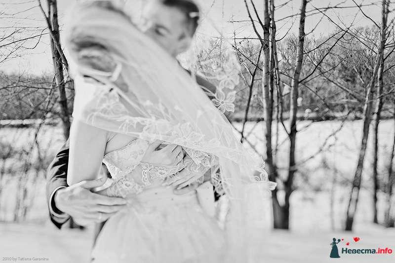 Фото 86710 в коллекции Невесты и женихи!  - Свадебный фотограф. Татьяна Гаранина