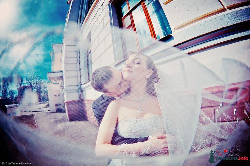 Фото 86721 в коллекции Невесты и женихи!  - Свадебный фотограф. Татьяна Гаранина