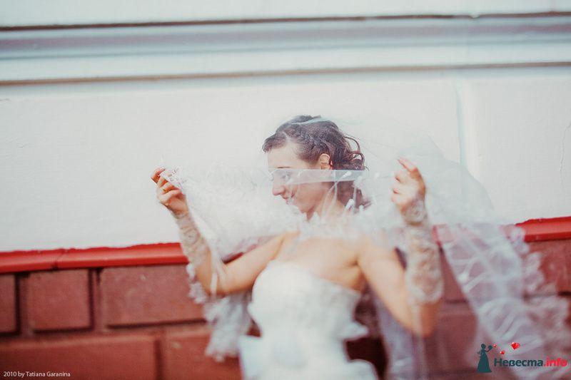 Фото 86727 в коллекции Невесты и женихи!  - Свадебный фотограф. Татьяна Гаранина