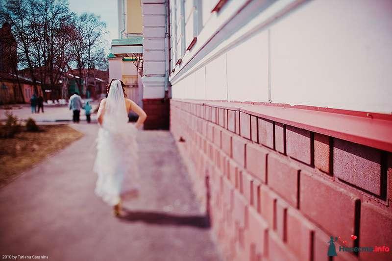Фото 86729 в коллекции Невесты и женихи!  - Свадебный фотограф. Татьяна Гаранина