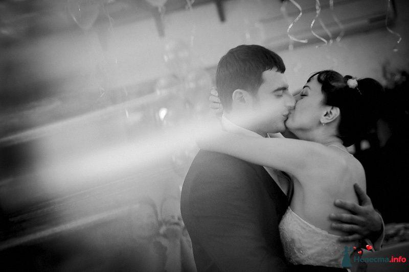 Фото 86740 в коллекции Борис и Тоня - Свадебный фотограф. Татьяна Гаранина