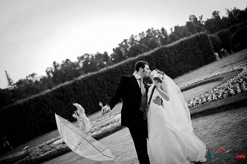 дождливый поцелуй - фото 86744 Свадебный фотограф. Татьяна Гаранина