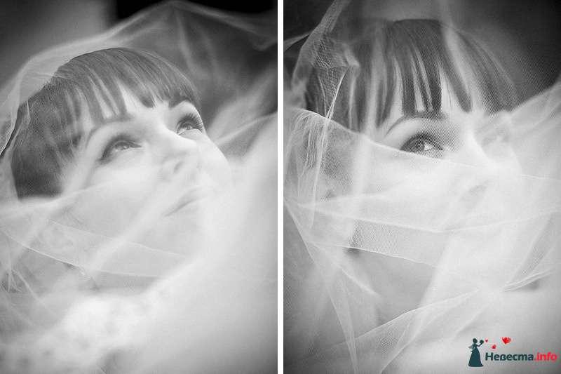 Фото 86765 в коллекции Борис и Тоня - Свадебный фотограф. Татьяна Гаранина