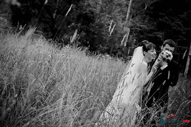 Фото 86781 в коллекции Борис и Тоня - Свадебный фотограф. Татьяна Гаранина