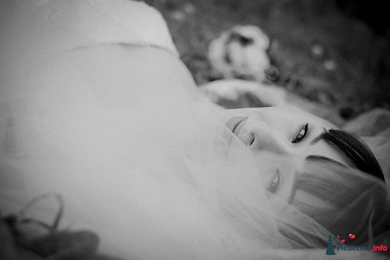 Фото 86785 в коллекции Борис и Тоня - Свадебный фотограф. Татьяна Гаранина