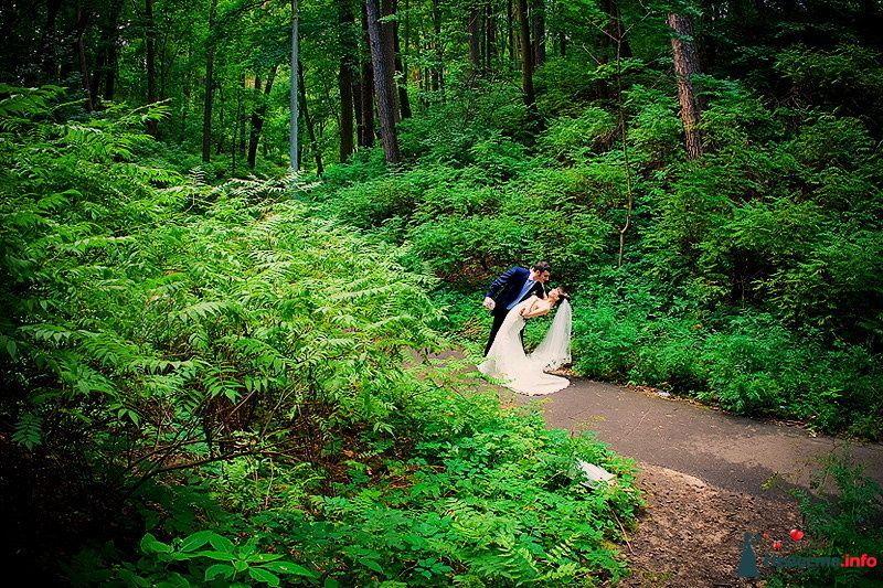 Фото 86797 в коллекции Борис и Тоня - Свадебный фотограф. Татьяна Гаранина