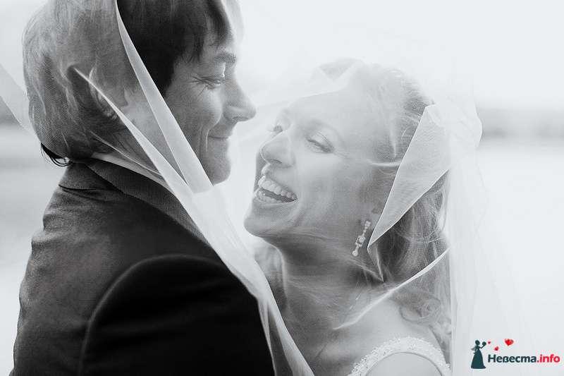 Жених и невеста стоят, прислонившись друг к другу, под фатой - фото 88969 Свадебный фотограф. Татьяна Гаранина