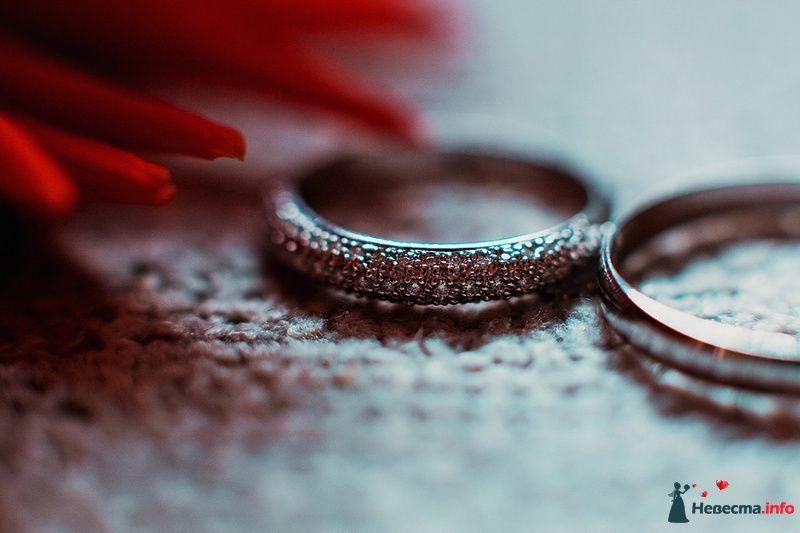 Золотые кольцо с рифленой поверхностью на сером фоне. - фото 89009 Свадебный фотограф. Татьяна Гаранина