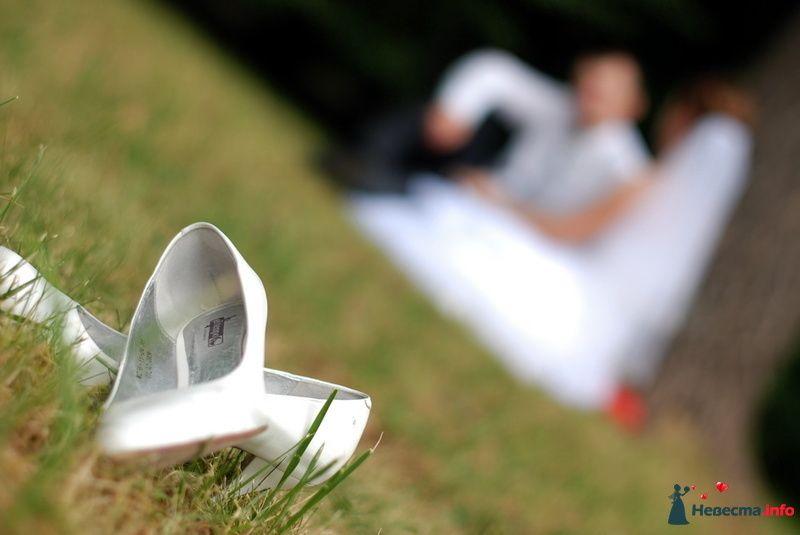 Фото 130084 в коллекции Свадьба Портфолио - Камилла ф