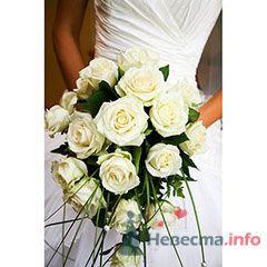"""Фото 71974 в коллекции Мои фотографии - Магазин цветов """"FlowerFest"""""""