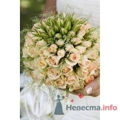 """Фото 71975 в коллекции Мои фотографии - Магазин цветов """"FlowerFest"""""""