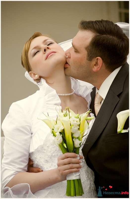 Фото 90752 в коллекции Мои свадебные работы и фотосессии - Невеста01
