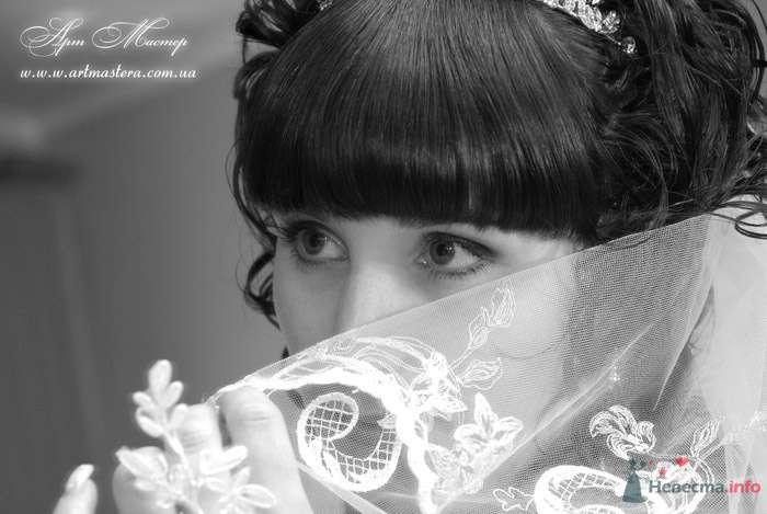 Фото 72226 в коллекции Свадьба в Донецке - Руслан