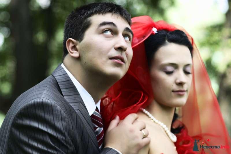 Фото 90750 в коллекции Свадебный - Анастасия Lokofoto - фотограф