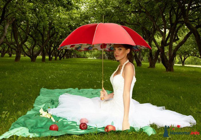 Фотосессия невесты на природе под красным зонтиком на зеленом покрывале с красными яблоками  - фото 104308 Анастасия Lokofoto - фотограф