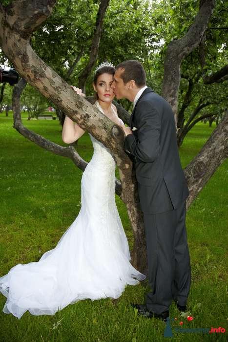 Фото 104311 в коллекции Свадебный - Анастасия Lokofoto - фотограф
