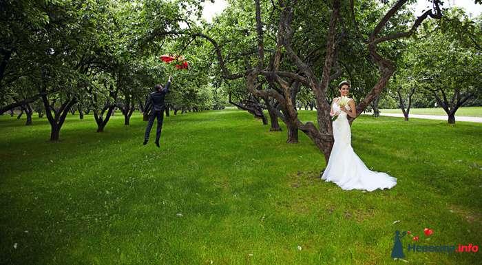 Фото 104322 в коллекции Свадебный - Анастасия Lokofoto - фотограф