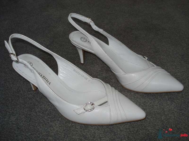 Мои туфельки 2 - фото 111148 Коши