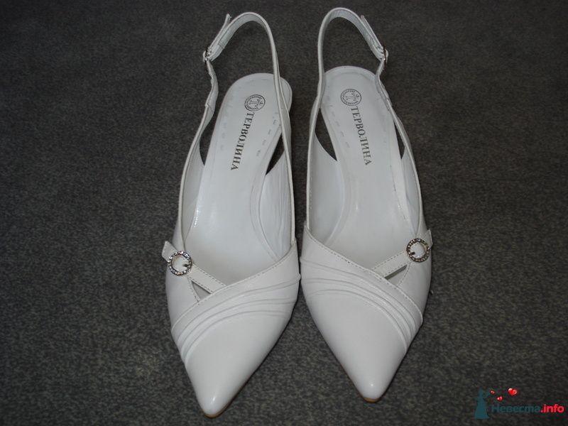 Мои туфельки 3 - фото 111149 Коши