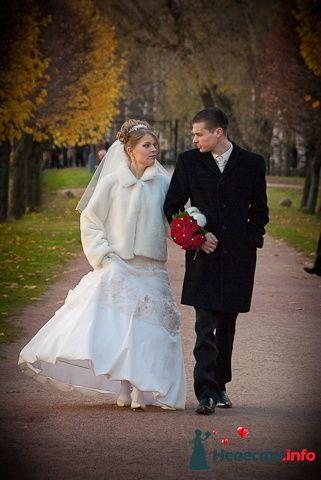 Антон и Елена - фото 104906 joshhh