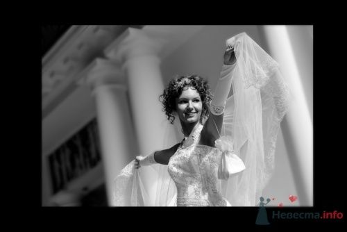 Фото 4476 в коллекции Свадебные